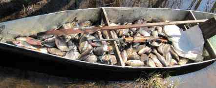 рыбалка на кривду