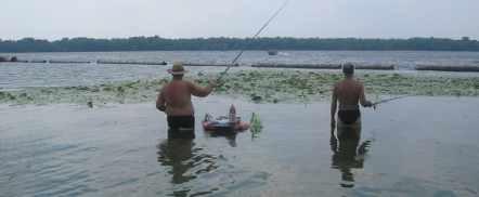 как ловить рыбу в северный ветер