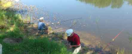 рыбалка в затонах волгограда