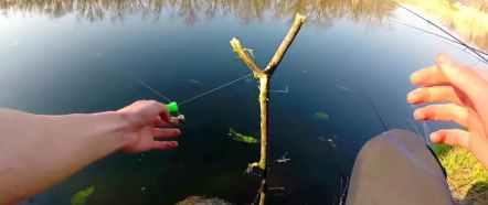 рыбалка ловим на закидушку