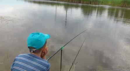 видео про летнюю рыбалку на поплавочную удочку