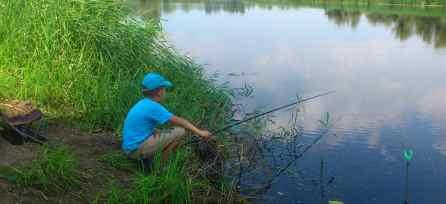 что необходимо знать начинающему рыбаку