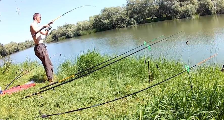 Рыбалка на карпа в июне