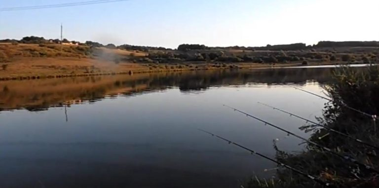 ловля на водохранилище фидером