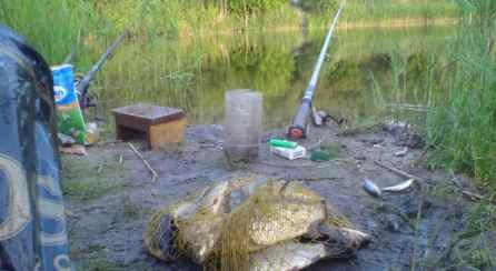 Влияние ветра на клёв - На рыбалке!