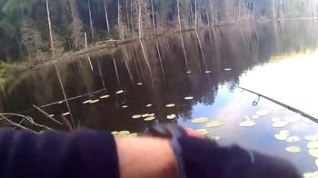 Хитрости ловли на небольшом озере
