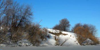 Тонкости ловли окуня зимой в лозняке