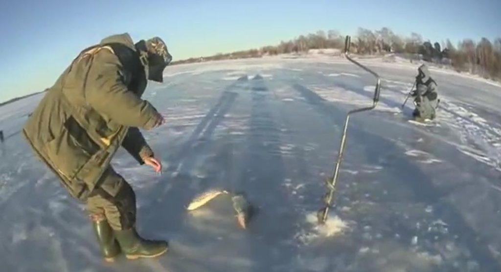 Тактика ловли жереха в зимние месяцы