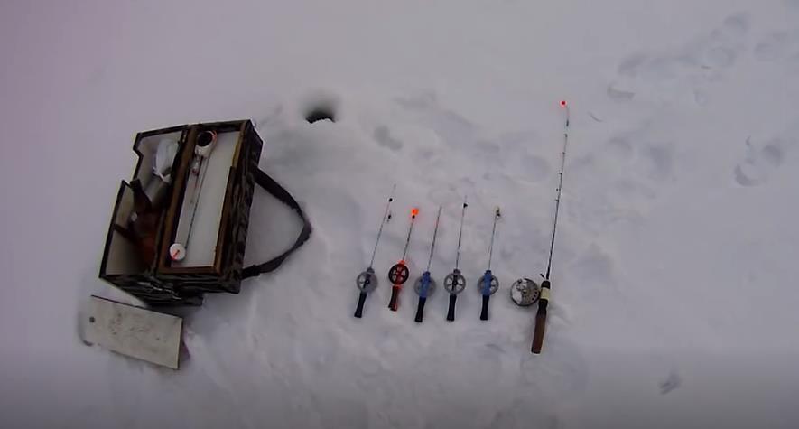 Снасти для ловли голавля в январе