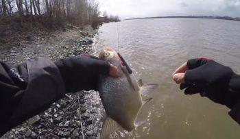 Весенняя рыбалка по мутной воде