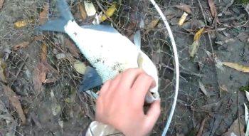 Рыбалка в ноябре - что ловится в ноябре?
