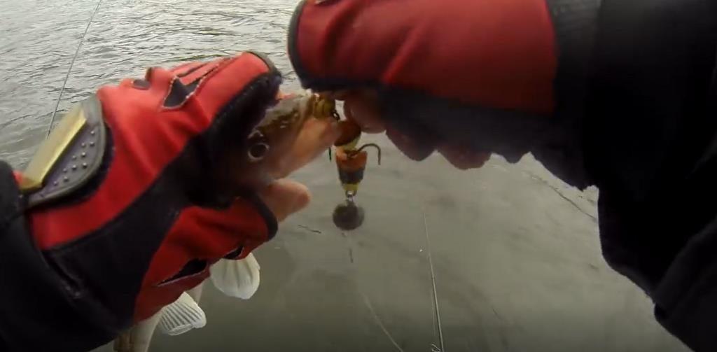 Оснащаем удилище для ловли судака