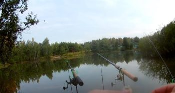 Рыбалка в августе - какую рыбу ловить?