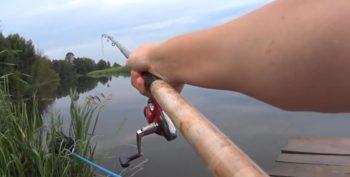 Как прикармливать рыбу