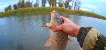 Основные осенние советы по рыбалке