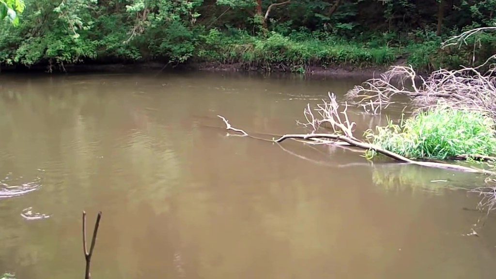 Особенности рыбной ловли на маленьких реках